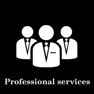 professional-services-industry-serve-vyomne